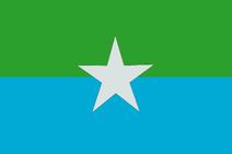Reefs Flag