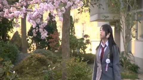 AKB48 Sakura no Hanabiratachi 2008 PV