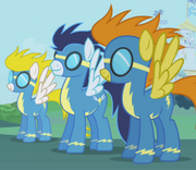 Wonder bolts