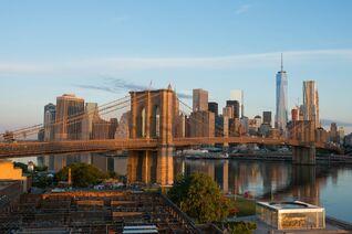 Brooklynbridge3-julienneschaer x large