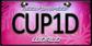 WorldLicensePlateCUP1D