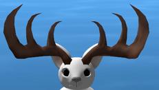 Megaloceros horns