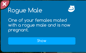Rouge Male Message