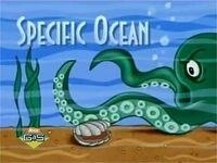 Specific Ocean