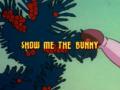 Title-Show Me the Bunny