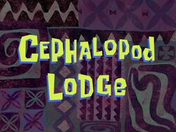 Cephalopod Lodge