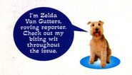Zelda van gutters from april 1997 contents page