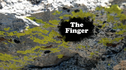 Finger title card
