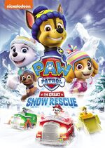 Paw Patrol The Great Snow Rescue DVD
