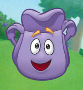 Character-large-backpack