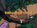 Rumble in the Jungle title