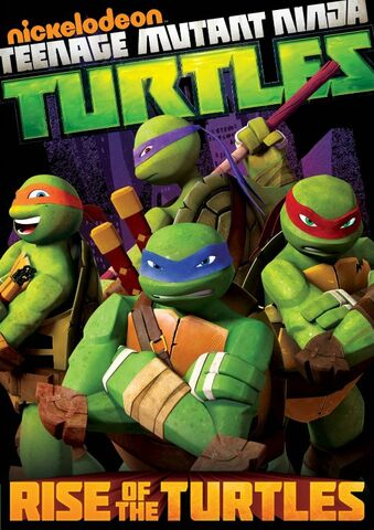 File:Rise of the Turtles DVD.jpg
