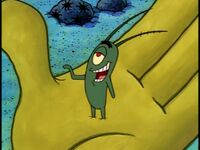 Plankton in hand