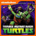 Icon-Teenage-Mutant-Ninja-Turtles