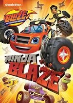 Ninja Blaze (DVD)