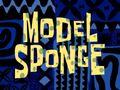 Model-Sponge