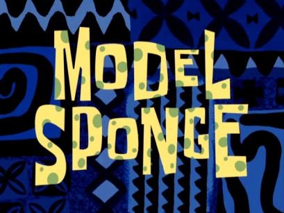 File:Model-Sponge.jpg