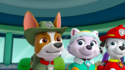 PAW Patrol Tracker the Jungle Pup Lookout