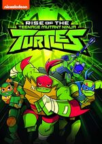 Rise of the TMNT DVD