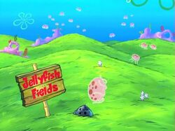 Jellyfish feilds lol
