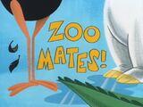 Zoomates!