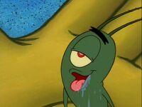 Plankton! Gallery (25)