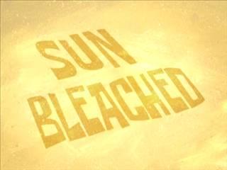 File:Sun Bleached.jpg