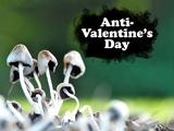 Anti-Valentine's Day