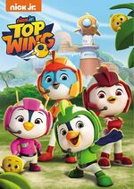 Top Wing DVD