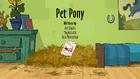 Pet Pony
