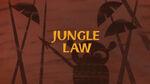La Ley de la Selva