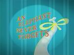 AnElephantNeverForgets