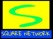 SquareNetwork1989logo