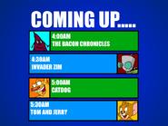 Next-bacon-zim-cat-tom