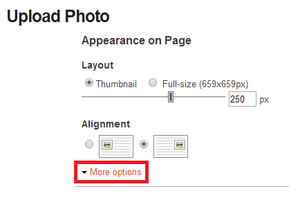 Upload photo more options