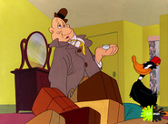 Looney-kasplat