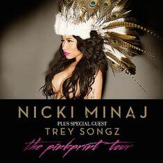 The PinkPrint Tour Poster
