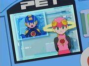 Roll-megaman-pet