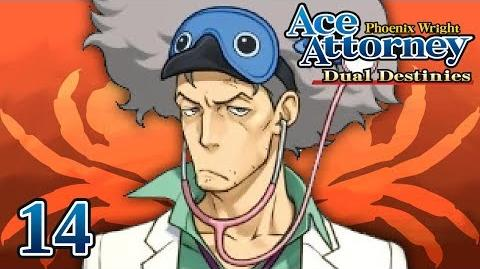 A PIRATE'S WRATH - Let's Play - Phoenix Wright Ace Attorney Dual Destinies - 14 - Playthrough