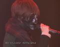 Bronzearmdrive live tokyo teddy bear so21397740