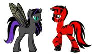 Skydex pony pic