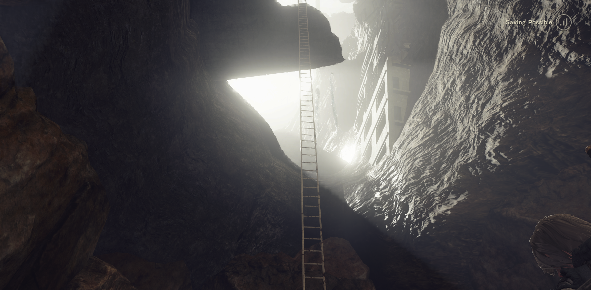 Image - Cave Ladder.png | NIER Wiki | FANDOM powered by Wikia