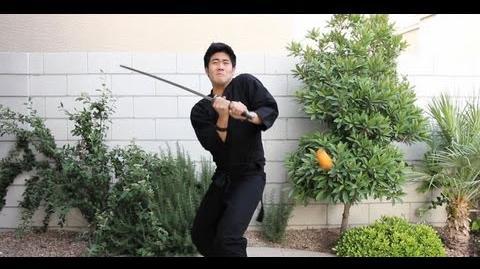 Fruit Ninja FAIL