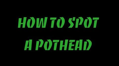 How To Spot A Pothead