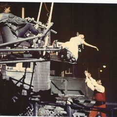 The rig used to follow Cathy Podewell's character Judy as she falls from the roof of Hull House. I originally had this rig specially built to follow actor Todd Allen as his character Jim fell out of his bedroom window in WITCHBOARD.