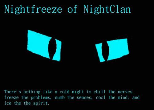 Nightfreeze of NightClan