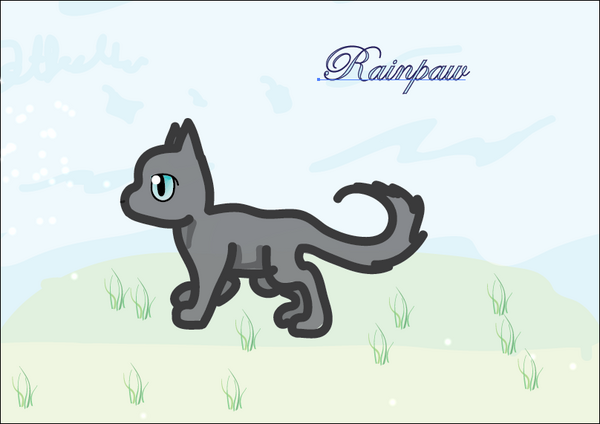 Rainpaw ~ By Jetfeather for Rainy