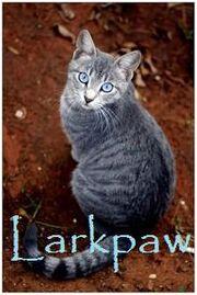 Larkpaw