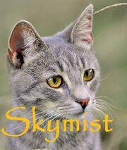 Skymist