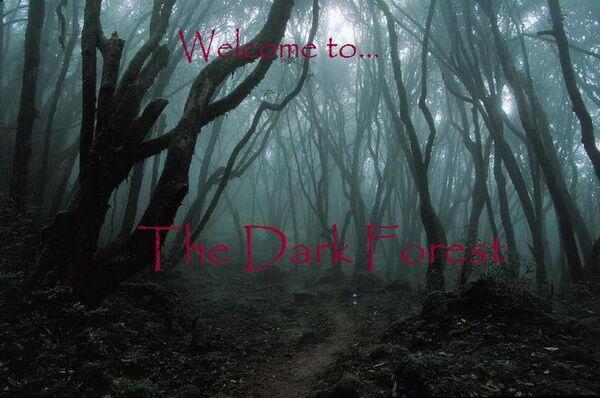Dark Forest Spiritual Image